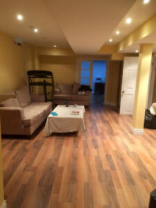 Large One Bedroom Basement - Seperate Entrace - Thornhill Woods