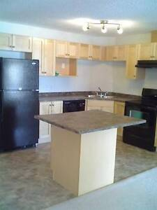 Terwillegar 2 Bedroom/2 Bath Condo Edmonton SW - Available Now