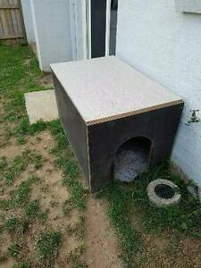 Solid big Dog Kennel Hammondville Liverpool Area Preview