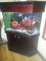 Aquarium en coin avec meuble de luxe