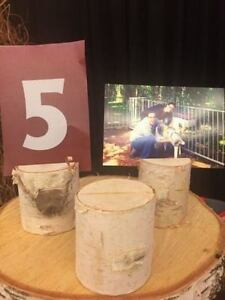 Rustic Wedding Decor: Birch Table Number/Photo Holders