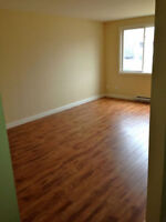 Roommate Wanted (Apartment Available Immediately)