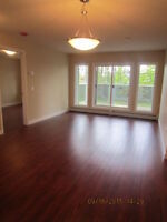 Huge 2 Bed / 2 Bath Brand New Condo For Rent – 127 St. 142 Ave N