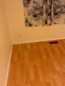 Large room for rent available July 1