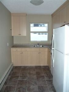 MODERN 2 Bdrm apartment - Available Now or June 1, 2016
