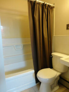 Bachelor Apartment Close to Moncton Hospital! Available in Oct!