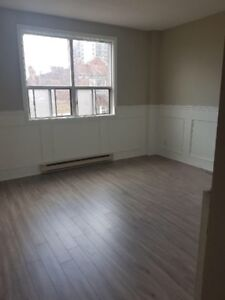 1 Bedroom Renovated + Clean Apartment - James St N