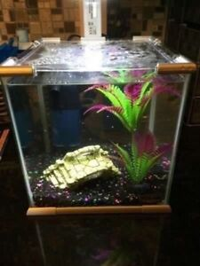 he Top Fin Glass Aquarium w/ LED Light. Perfect For Beta Fish