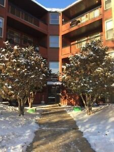Apartment Style Condominium Available for Immediate Rental