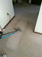 Carpet Cleaning (Steam)