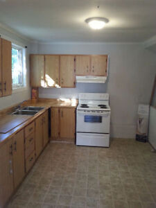 Spacious, 2 story, 4 bedroom house available in MUN/Avalon Mall