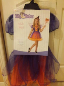 Witch Fairy Costume