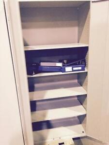 Storage Cabinet 36x16x73
