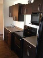 166 River Avenue, 1 Bedroom, Pet Friendly, Newly Renovated!
