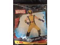 Superhero costumes/fancy dress. Age 5-6. £5 each