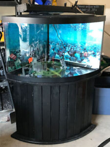 54 Gallon Tank and ALL Accessories