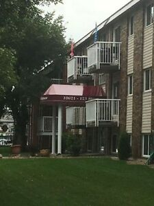 Sublease from Dec 25 for 2 months 1bedroom apt on 10621 123 St