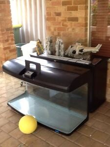 Fish Tank - JEBO R3150 tank and stand complete setup East Victoria Park Victoria Park Area Preview