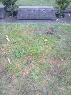 Premium Lawn Burial Plot St Ives Ku-ring-gai Area Preview