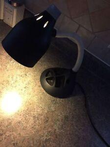 Student study lamp