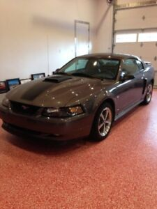 Absolutely Mint 2003 Ford Mustang Mach 1