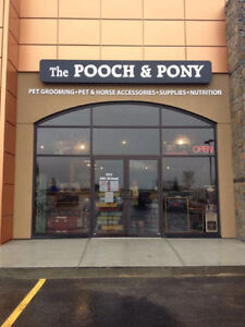 POSITION AVAILABLE IN PET & HORSE BOUTIQUE & PET GROOMING SALON!
