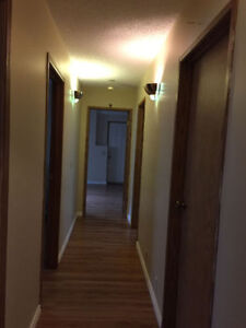 Clean 2 bedroom basement suite for rent in Martindale near LRT