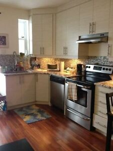 Recently Renovated 3 1/2 in St-Henri (June 1st)