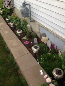 Full serve fall clean up. Gutters, windows, lawns, siding & more London Ontario image 7