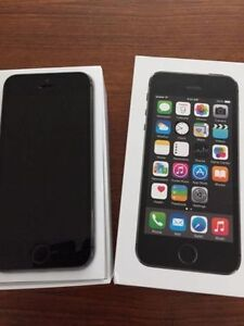 Perfect 16gb Iphone 5S