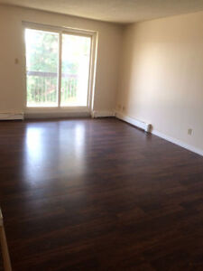 2 Bdrm Apartments, 1 Block to Intercity Mall