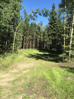 Red Lodge Estates Acreage