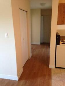 Beautiful 2 bedrooms Apartment for rent in Prince Albert, SK
