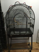 Large Bird Cage ** can deliver **
