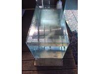 bare fish tank