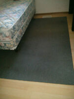 Area Rugs for Sale from a Student House