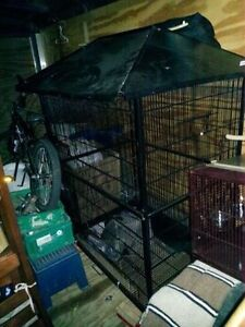 Large flight cage   Can be used for birds, sugar babies Kitchener / Waterloo Kitchener Area image 3