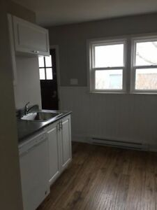 Renovated 2 bedroom flat on Frederick st in Fairview