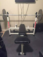TDS Olympic Bench Press / Squat Rack, Dips + Olympic Weight, Bar