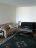 WELL FURNISHED ROOM FOR $210/WEEK OR $35/NIGHT, ALL INCLUSIVE