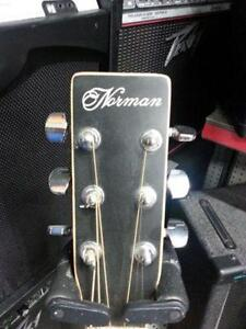 Norman acoustic guitar. We sell used goods. 108321