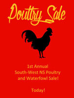 Poultry Sale, this Saturday!
