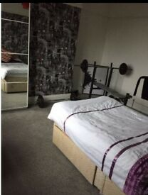 Room available to rent - Brislington