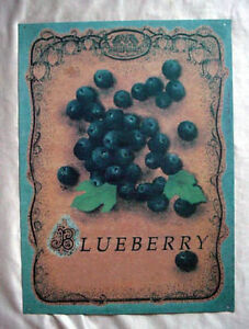 Indoor/Outdoor Tin Blueberry Sign by The Cottage Garden
