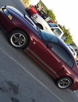 04 Ford Mustang GT 5 Speed, fully loaded