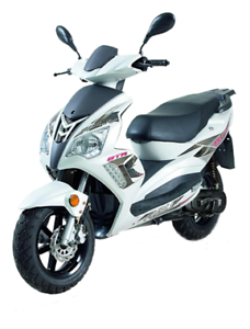 SCOOTER ADLY 50CC 2019