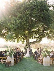 Outdoor Wedding Ceremony Location Kitchener / Waterloo Kitchener Area image 2