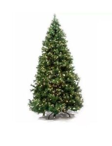 SAPIN DE NOËL/CHRISTMAS TREE 