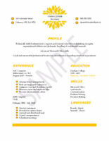Affordable Resume Writing Service