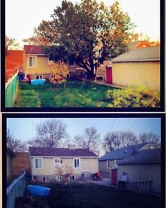 TREE CUTTING AND FALL CLEAN UP SERVICES London Ontario image 8